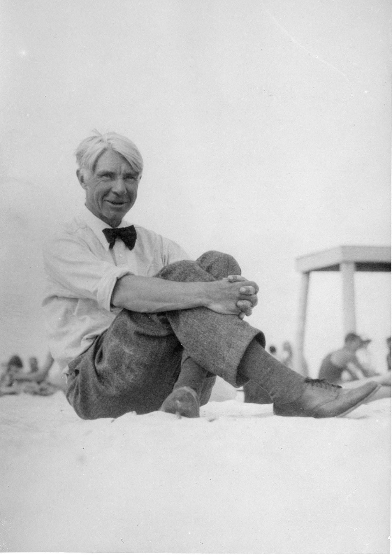 a biography of carl sandburg a novelist Carl august sandburg was born january 6 with poet and novelist margaret dr penelope niven is the author of carl sandburg: a biography and carl.