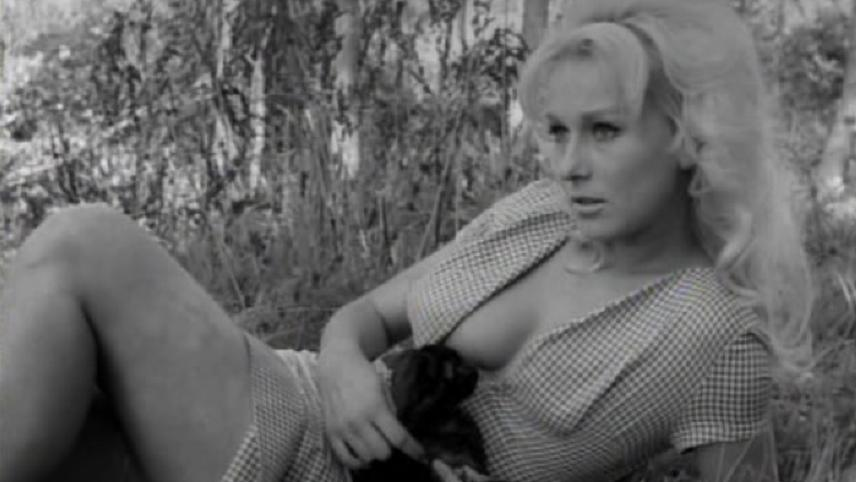 Boobs Frances Bavier naked (71 pics) Porno, 2018, legs